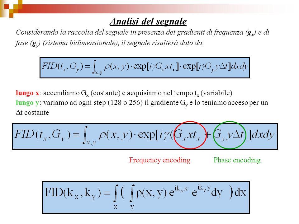 Analisi del segnale lungo x: accendiamo G x (costante) e acquisiamo nel tempo t x (variabile) lungo y: variamo ad ogni step (128 o 256) il gradiente G