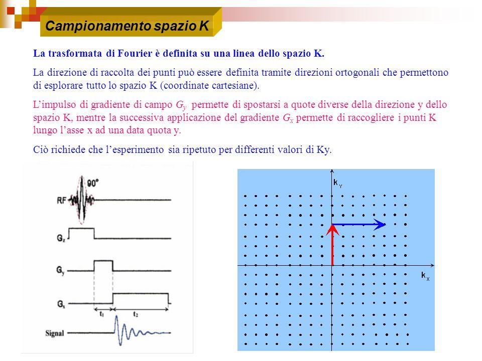 La trasformata di Fourier è definita su una linea dello spazio K. La direzione di raccolta dei punti può essere definita tramite direzioni ortogonali