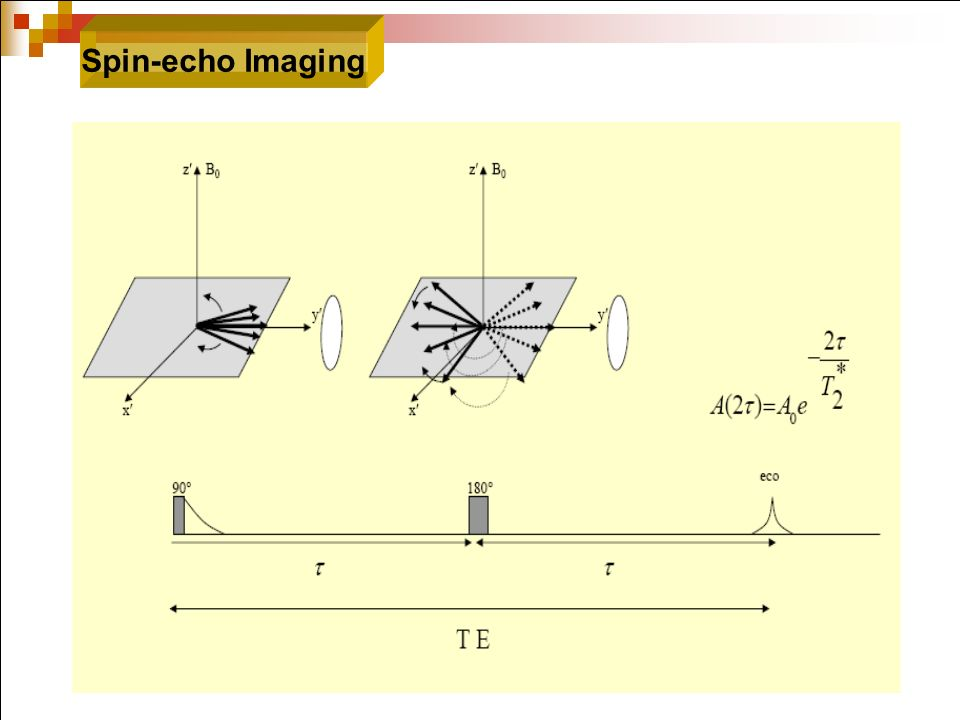 Spin-echo Imaging