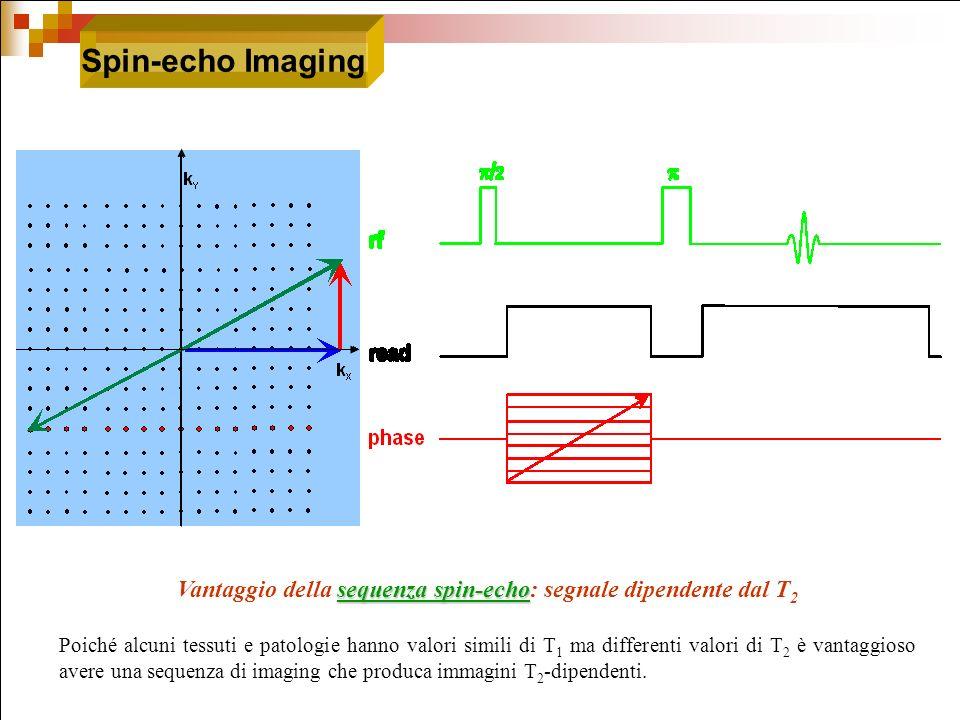sequenza spin-echo Vantaggio della sequenza spin-echo: segnale dipendente dal T 2 Poiché alcuni tessuti e patologie hanno valori simili di T 1 ma diff