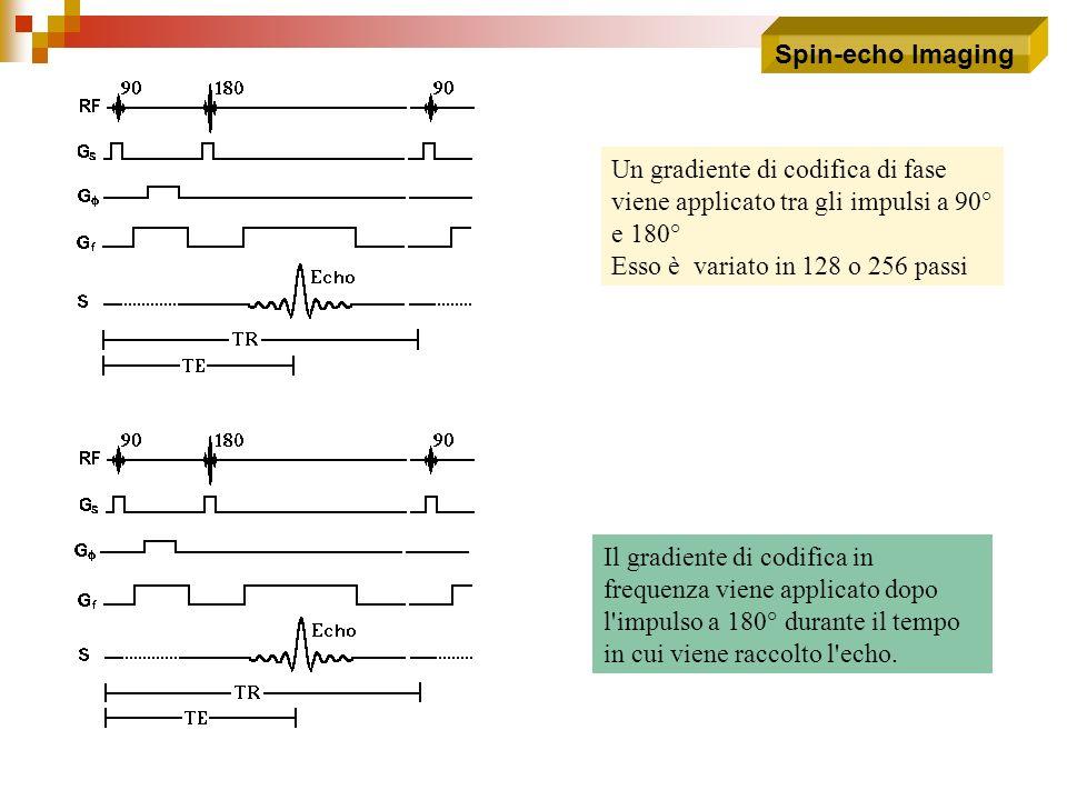 Un gradiente di codifica di fase viene applicato tra gli impulsi a 90° e 180° Esso è variato in 128 o 256 passi Il gradiente di codifica in frequenza