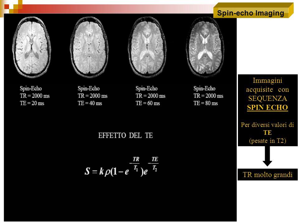 Immagini acquisite con SEQUENZA SPIN ECHO Per diversi valori di TE (pesate in T2) TR molto grandi
