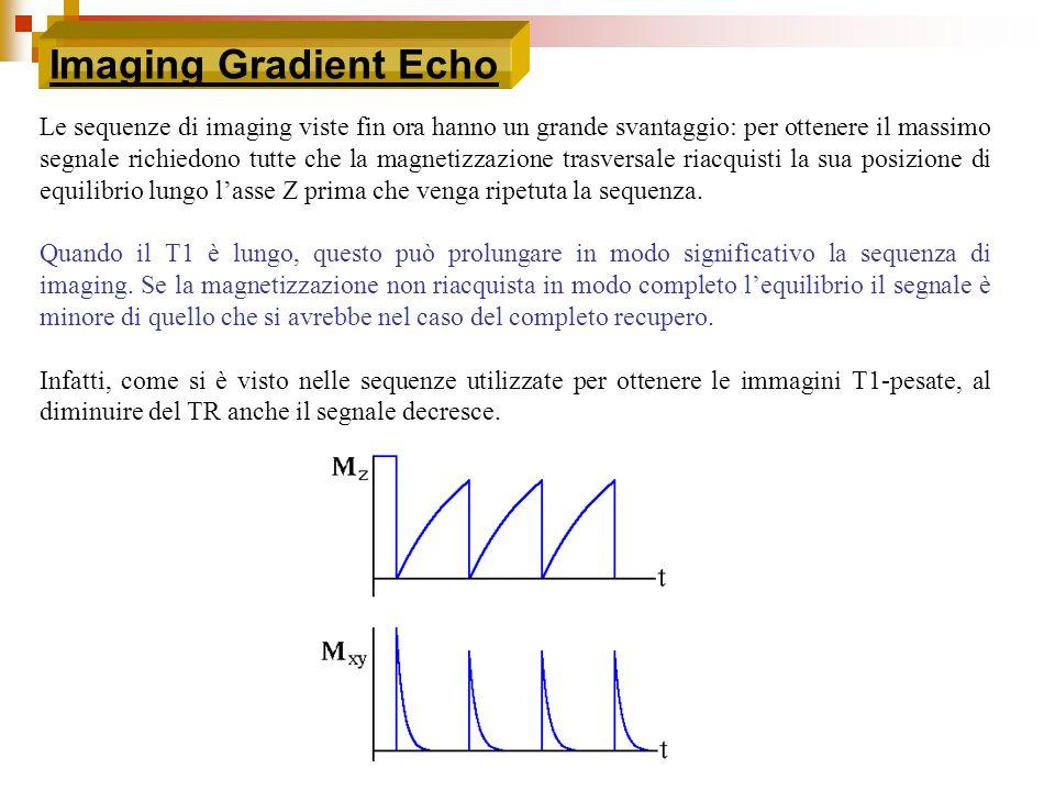 Imaging Gradient Echo Le sequenze di imaging viste fin ora hanno un grande svantaggio: per ottenere il massimo segnale richiedono tutte che la magneti