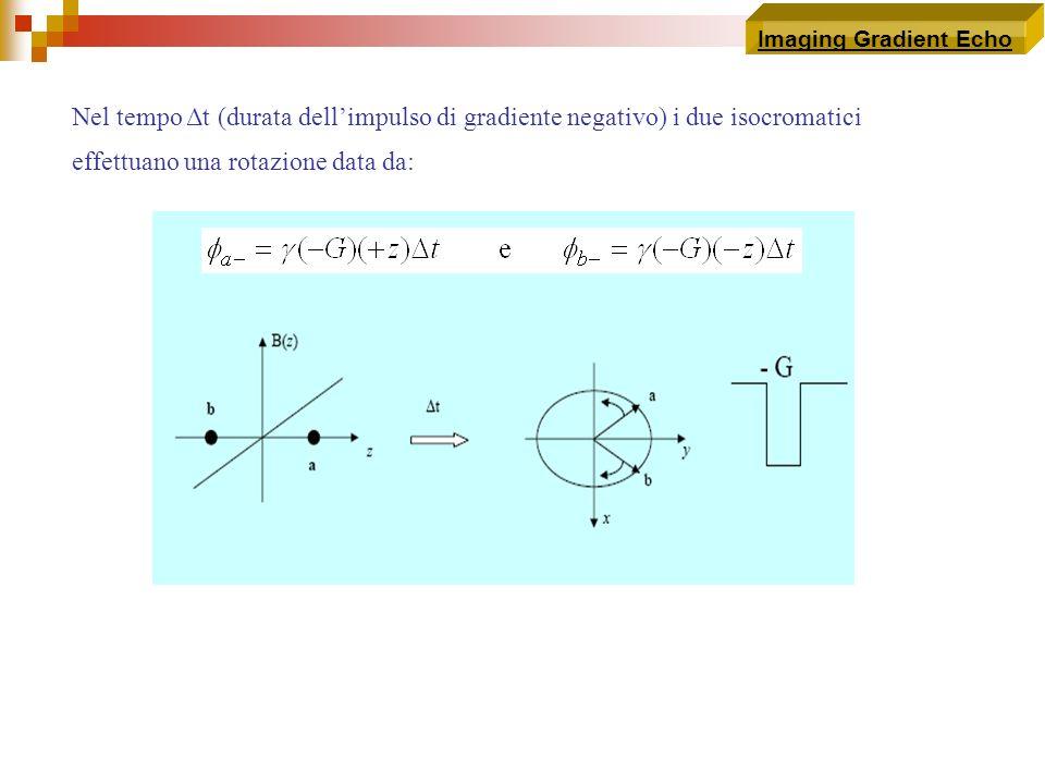 Imaging Gradient Echo Nel tempo Δt (durata dellimpulso di gradiente negativo) i due isocromatici effettuano una rotazione data da: