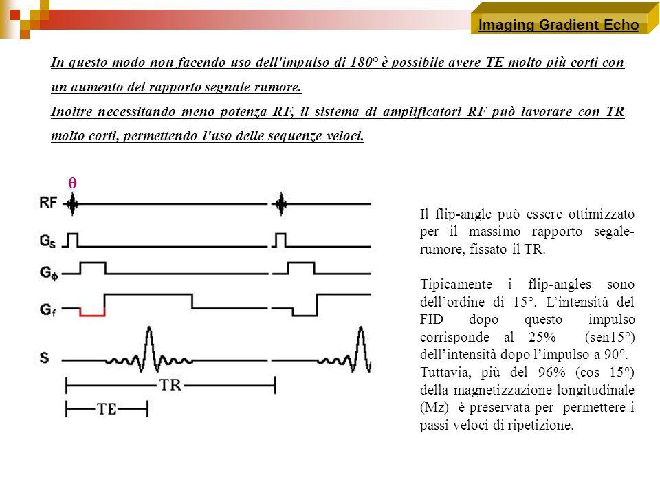 Imaging Gradient Echo In questo modo non facendo uso dell'impulso di 180° è possibile avere TE molto più corti con un aumento del rapporto segnale rum