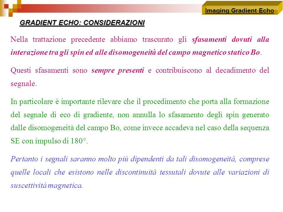 Imaging Gradient Echo Nella trattazione precedente abbiamo trascurato gli sfasamenti dovuti alla interazione tra gli spin ed alle disomogeneità del ca