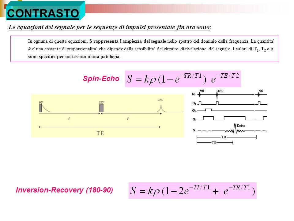 CONTRASTO Le equazioni del segnale per le sequenze di impulsi presentate fin ora sono: Inversion-Recovery (180-90) Spin-Echo In ognuna di queste equaz