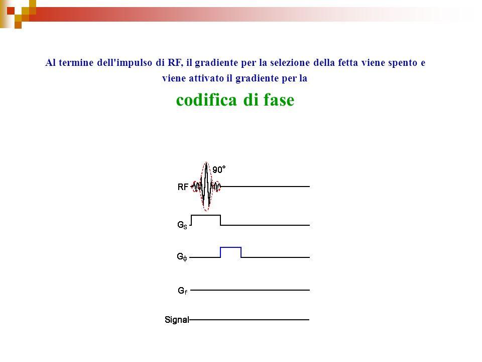 Al termine dell'impulso di RF, il gradiente per la selezione della fetta viene spento e viene attivato il gradiente per la codifica di fase