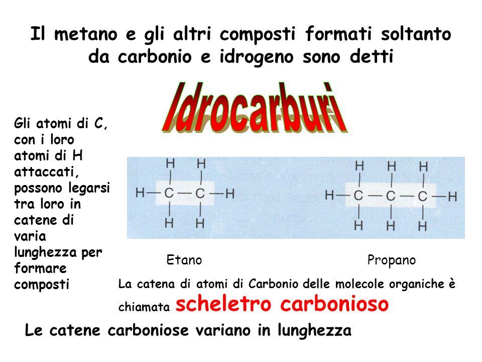 Il metano e gli altri composti formati soltanto da carbonio e idrogeno sono detti Gli atomi di C, con i loro atomi di H attaccati, possono legarsi tra