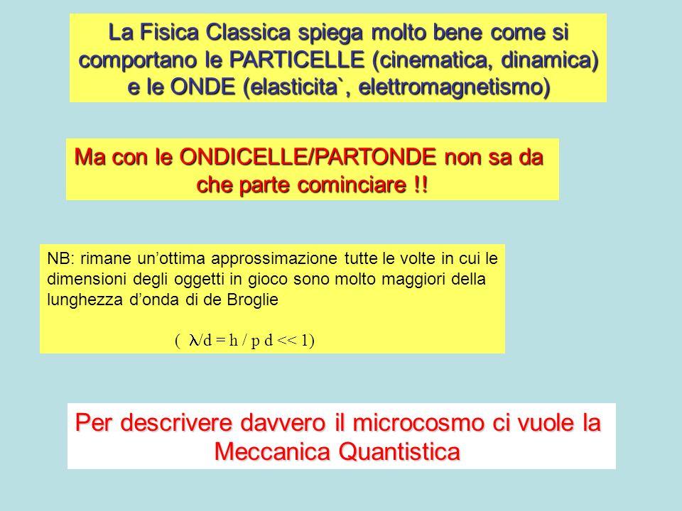 La Fisica Classica spiega molto bene come si comportano le PARTICELLE (cinematica, dinamica) e le ONDE (elasticita`, elettromagnetismo) Ma con le ONDI