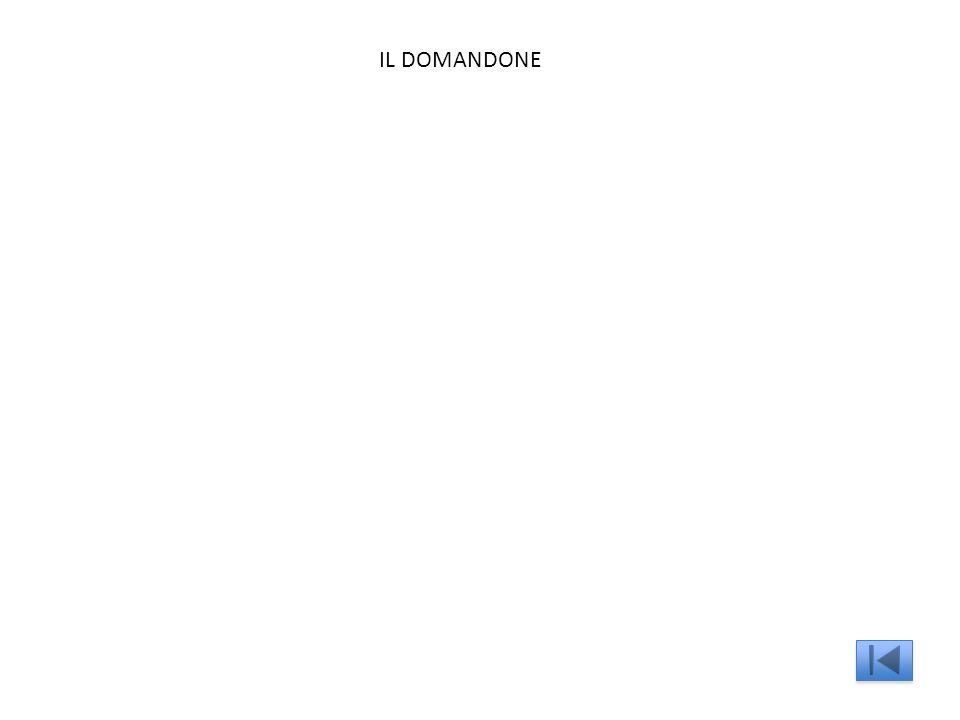 IL DOMANDONE