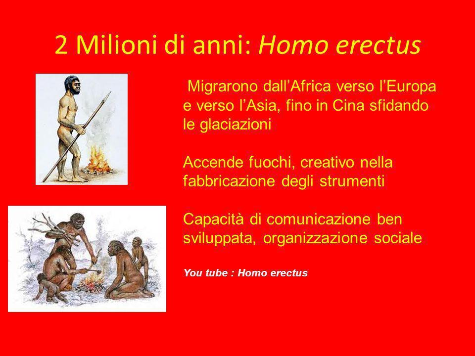 2 Milioni di anni: Homo erectus Migrarono dallAfrica verso lEuropa e verso lAsia, fino in Cina sfidando le glaciazioni Accende fuochi, creativo nella
