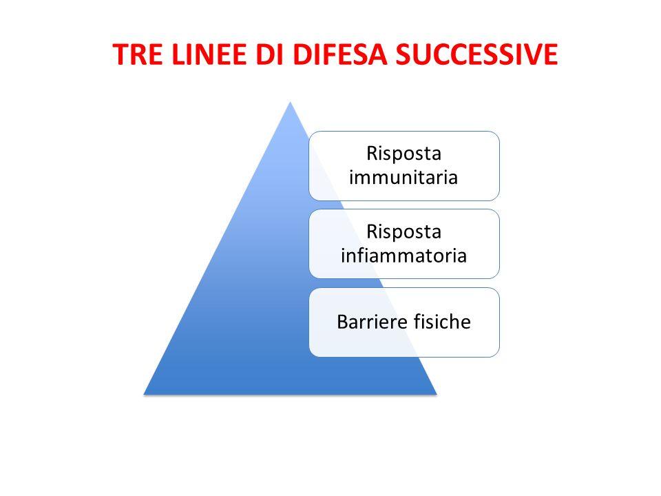 Risposta immunitaria Risposta infiammatoria Barriere fisiche TRE LINEE DI DIFESA SUCCESSIVE