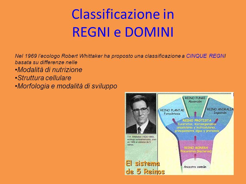 Classificazione in REGNI e DOMINI Nel 1969 lecologo Robert Whittaker ha proposto una classificazione a CINQUE REGNI basata su differenze nelle Modalit