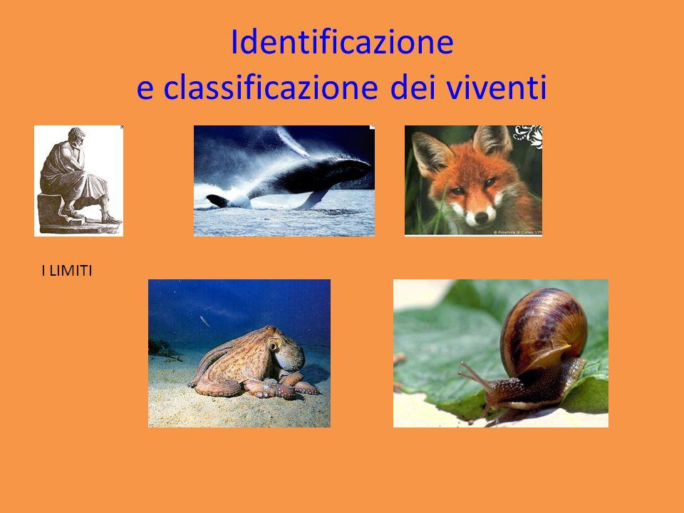 TASSONOMIA Si occupa di IDENTIFICARE e DENOMINARE le specie SISTEMATICA Individua criteri e regole per CLASSIFICARE gli organismi viventi e fossili