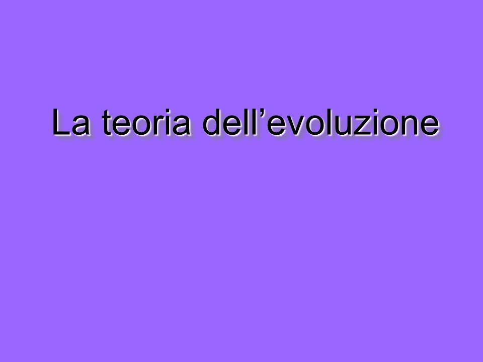 La teoria dellevoluzione