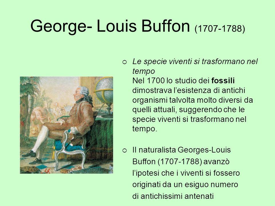 George- Louis Buffon (1707-1788) Le specie viventi si trasformano nel tempo Nel 1700 lo studio dei fossili dimostrava lesistenza di antichi organismi