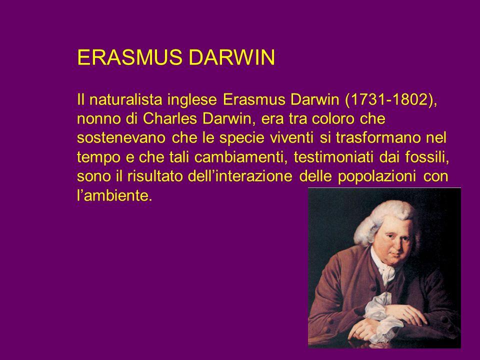 ERASMUS DARWIN Il naturalista inglese Erasmus Darwin (1731-1802), nonno di Charles Darwin, era tra coloro che sostenevano che le specie viventi si tra