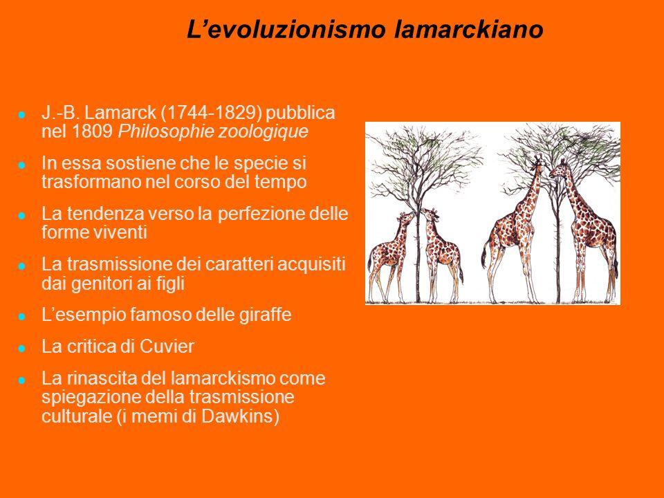 Levoluzionismo lamarckiano J.-B. Lamarck (1744-1829) pubblica nel 1809 Philosophie zoologique In essa sostiene che le specie si trasformano nel corso