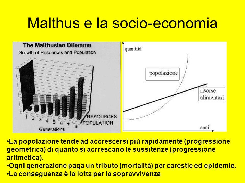 Malthus e la socio-economia La popolazione tende ad accrescersi più rapidamente (progressione geometrica) di quanto si acrrescano le sussitenze (progr