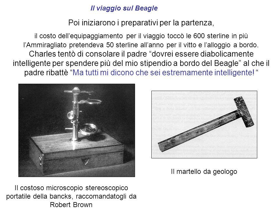 Il viaggio sul Beagle Il costoso microscopio stereoscopico portatile della bancks, raccomandatogli da Robert Brown Poi iniziarono i preparativi per la