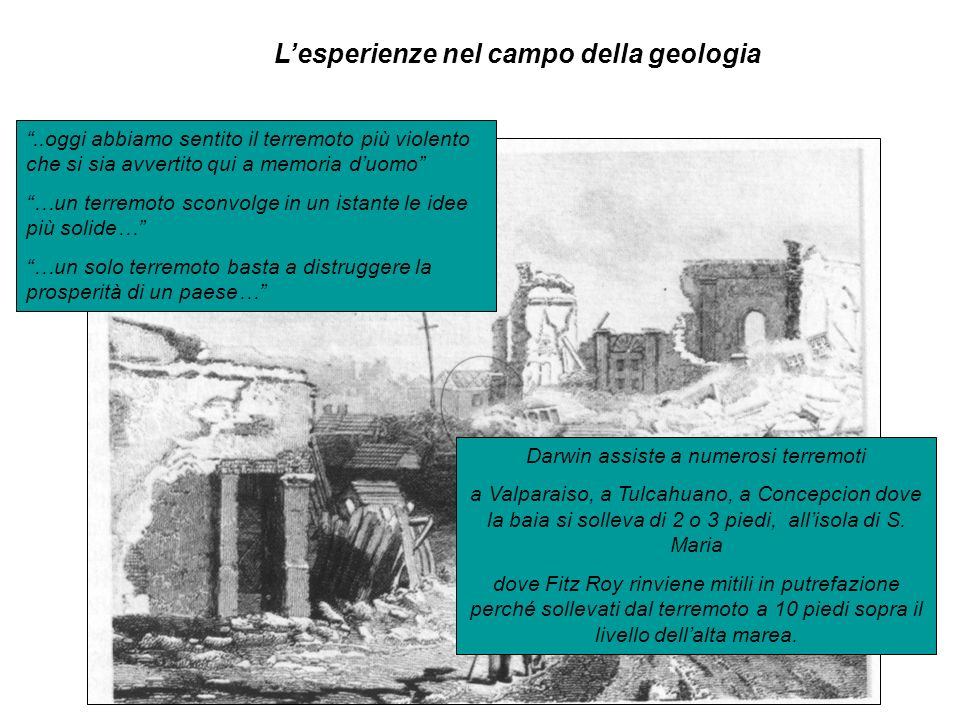 Lesperienze nel campo della geologia..oggi abbiamo sentito il terremoto più violento che si sia avvertito qui a memoria duomo …un terremoto sconvolge