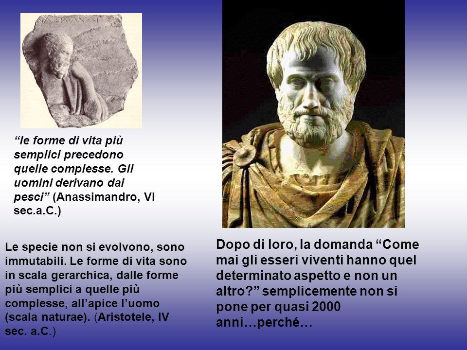 Il livello ontologico-filosofico: la fede nella creazione Indaga sul perché dellessere in sé,perché cè qualche cosa e non niente.