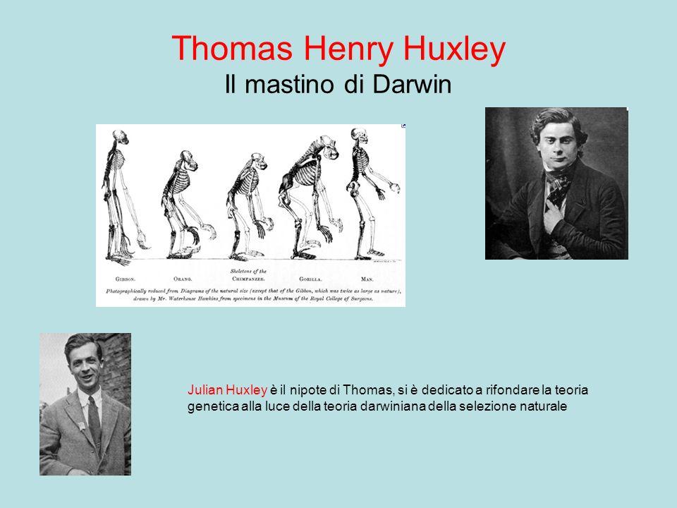 Thomas Henry Huxley Il mastino di Darwin Julian Huxley è il nipote di Thomas, si è dedicato a rifondare la teoria genetica alla luce della teoria darw