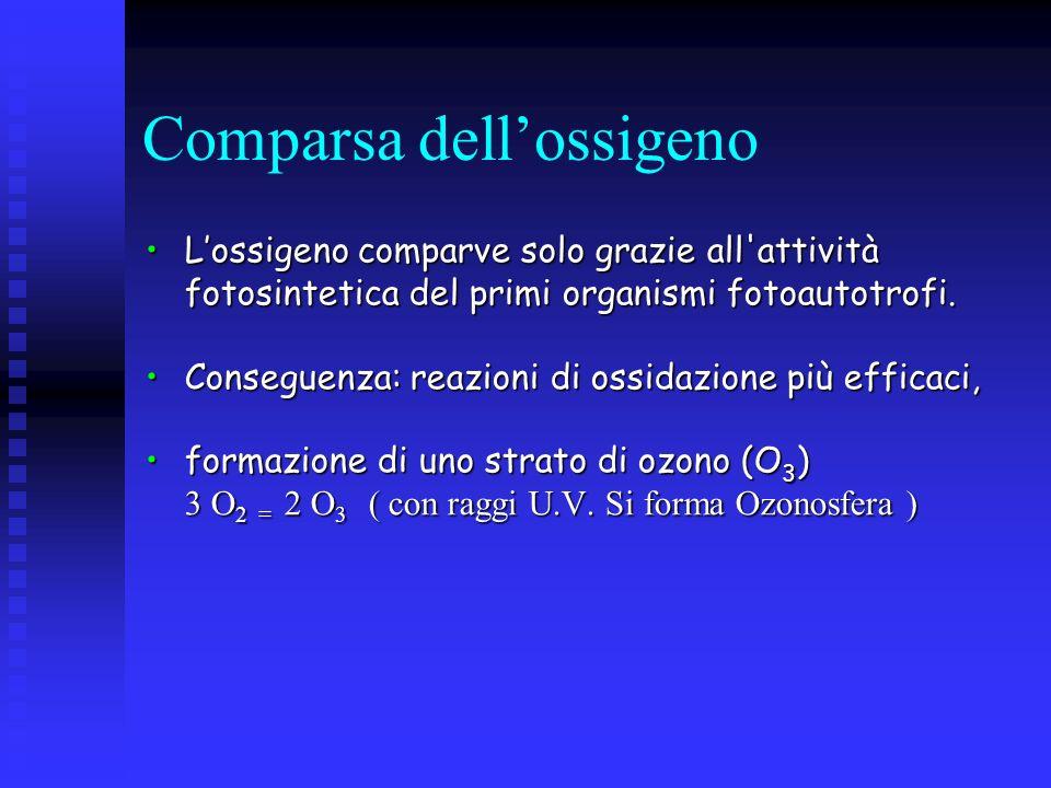 Comparsa dellossigeno Lossigeno comparve solo grazie all'attività fotosintetica del primi organismi fotoautotrofi.Lossigeno comparve solo grazie all'a