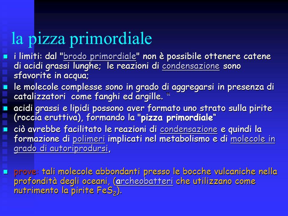 la pizza primordiale i limiti: dal