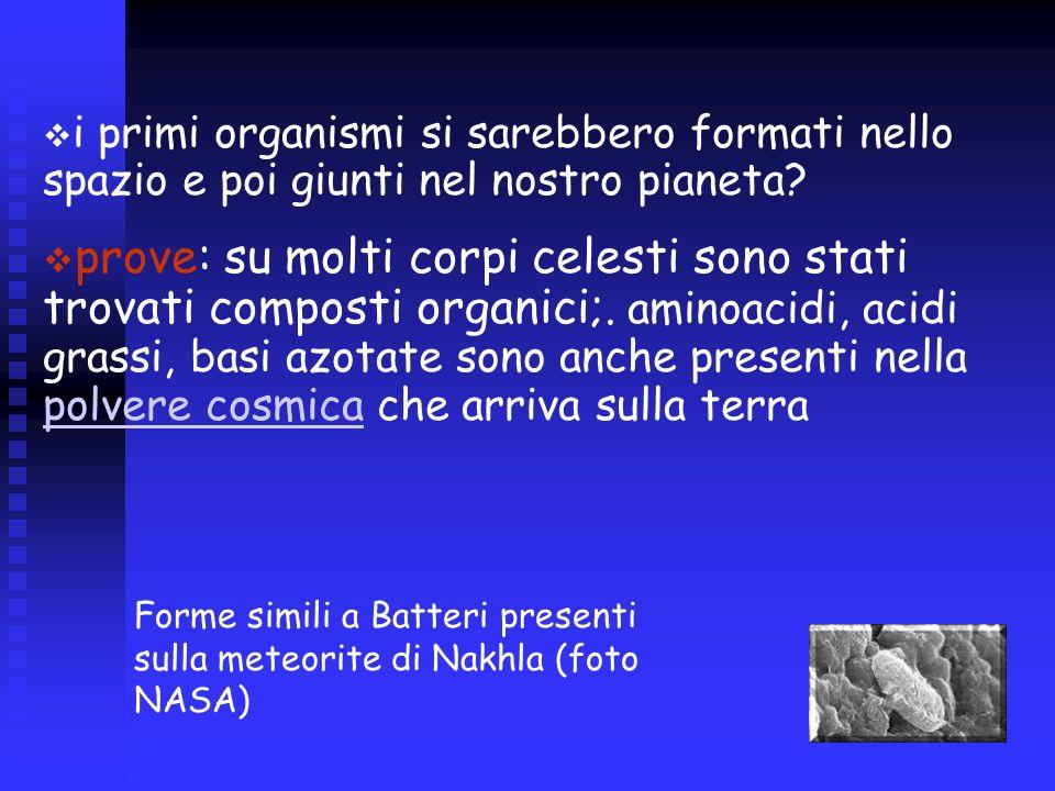 i primi organismi si sarebbero formati nello spazio e poi giunti nel nostro pianeta? prove: su molti corpi celesti sono stati trovati composti organic