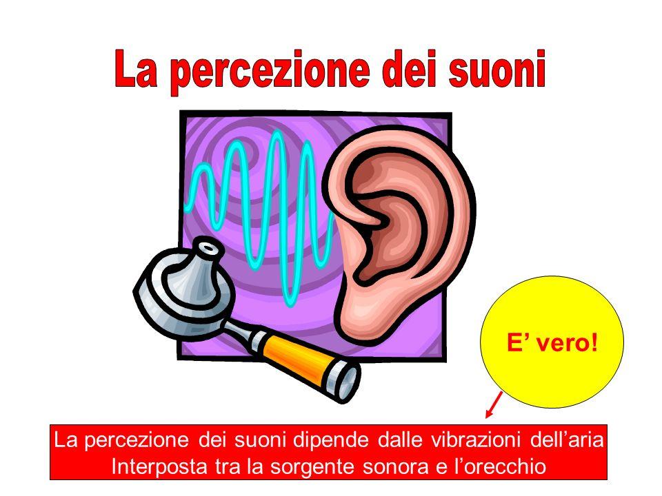 La percezione dei suoni dipende dalle vibrazioni dellaria Interposta tra la sorgente sonora e lorecchio E vero!