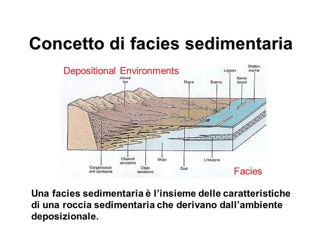 Concetto di facies sedimentaria Una facies sedimentaria è linsieme delle caratteristiche di una roccia sedimentaria che derivano dallambiente deposizi