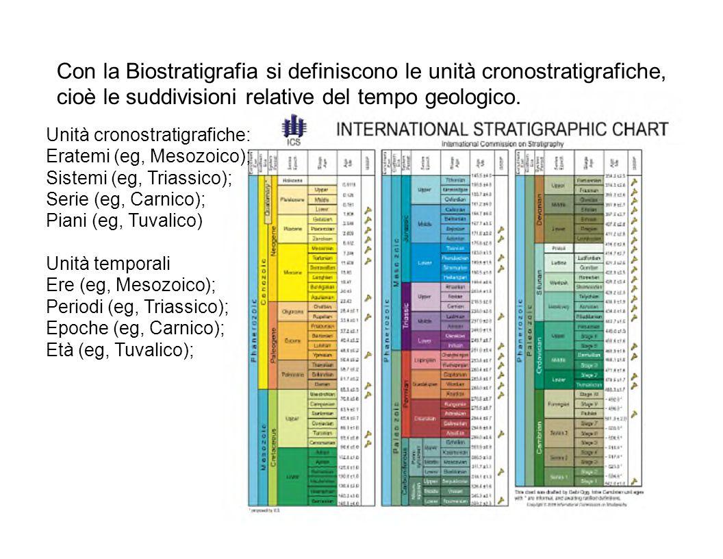 Unità cronostratigrafiche: Eratemi (eg, Mesozoico); Sistemi (eg, Triassico); Serie (eg, Carnico); Piani (eg, Tuvalico) Unità temporali Ere (eg, Mesozo