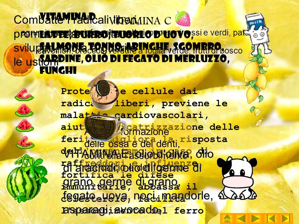 VITAMINA C agrumi, pomodori, fragole, meloni, peperoni rossi e verdi, patate, cavolfiori, broccoli, verdure a foglia verde, frutti di bosco Protegge le cellule dai radicali liberi, previene le malattie cardiovascolari, aiuta la cicatrizzazione delle ferite, migliora la risposta dell organismo in caso di raffreddori e influenze, fortifica le difese immunitarie, abbassa il colesterolo, facilita l assorbimento del ferro VITAMINA D latte, burro, tuorlo d uovo, salmone, tonno, aringhe, sgombro, sardine, olio di fegato di merluzzo, funghi Aiuta la formazione delle ossa e dei denti, controlla l assorbimento del calcio e del fosforo VITAMINA E: olio d oliva, olio di arachidi, olio di germe di grano, germe di grano, fegato, uova, noci, mandorle, asparagi, avocado, Combatte i radicali liberi, promuove la crescita e lo sviluppo, aiuta a guarire le ustioni