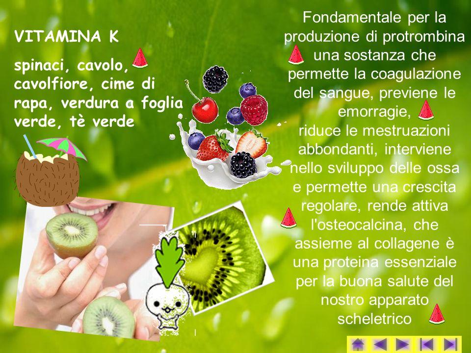 Fondamentale per la produzione di protrombina una sostanza che permette la coagulazione del sangue, previene le emorragie, riduce le mestruazioni abbondanti, interviene nello sviluppo delle ossa e permette una crescita regolare, rende attiva l osteocalcina, che assieme al collagene è una proteina essenziale per la buona salute del nostro apparato scheletrico VITAMINA K spinaci, cavolo, cavolfiore, cime di rapa, verdura a foglia verde, tè verde