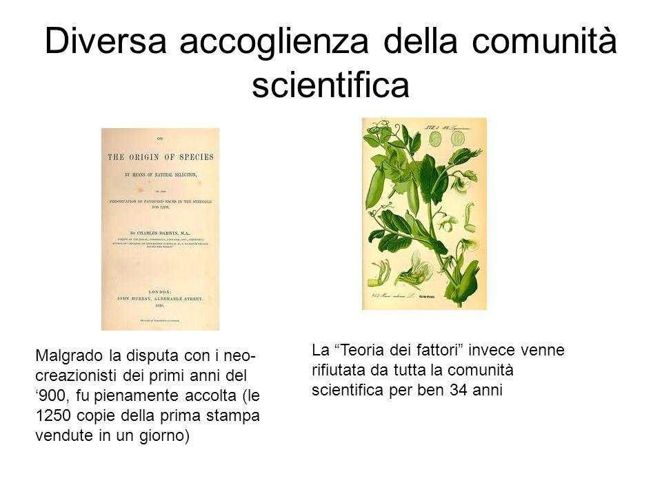 Diversa accoglienza della comunità scientifica Malgrado la disputa con i neo- creazionisti dei primi anni del 900, fu pienamente accolta (le 1250 copi