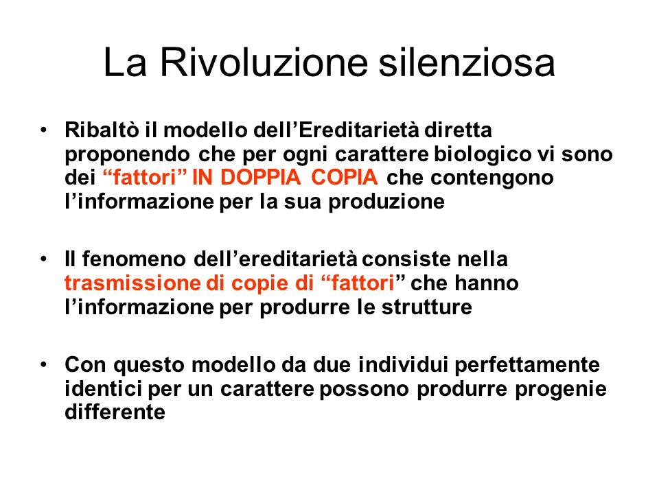 La Rivoluzione silenziosa Ribaltò il modello dellEreditarietà diretta proponendo che per ogni carattere biologico vi sono dei fattori IN DOPPIA COPIA