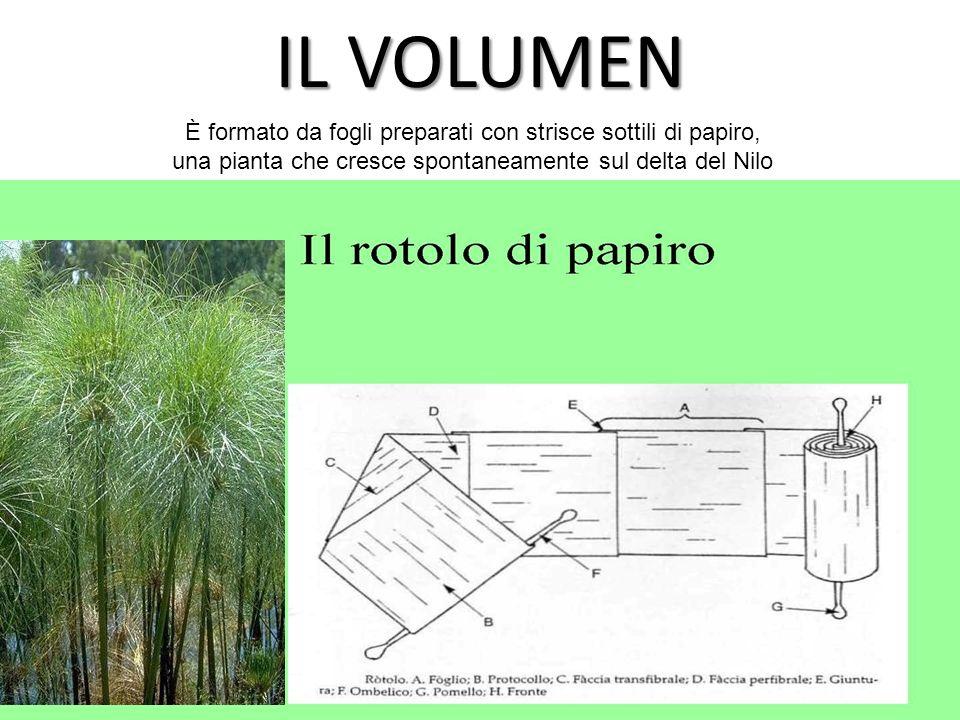IL VOLUMEN È formato da fogli preparati con strisce sottili di papiro, una pianta che cresce spontaneamente sul delta del Nilo