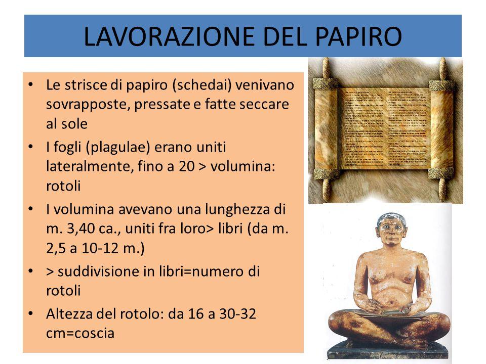 Le strisce di papiro (schedai) venivano sovrapposte, pressate e fatte seccare al sole I fogli (plagulae) erano uniti lateralmente, fino a 20 > volumin