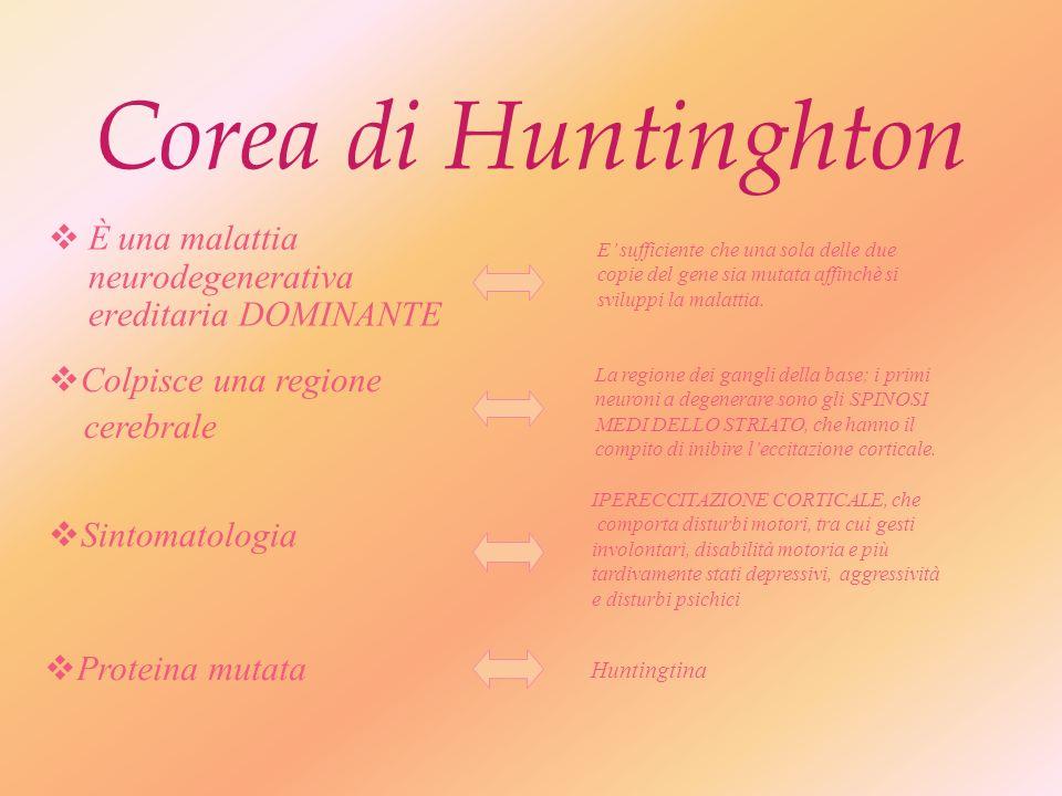 Espansione di triplette Corea di Huntington Distrofia miotonica Atassie Spinocerebellari Sindrome dellx fragile