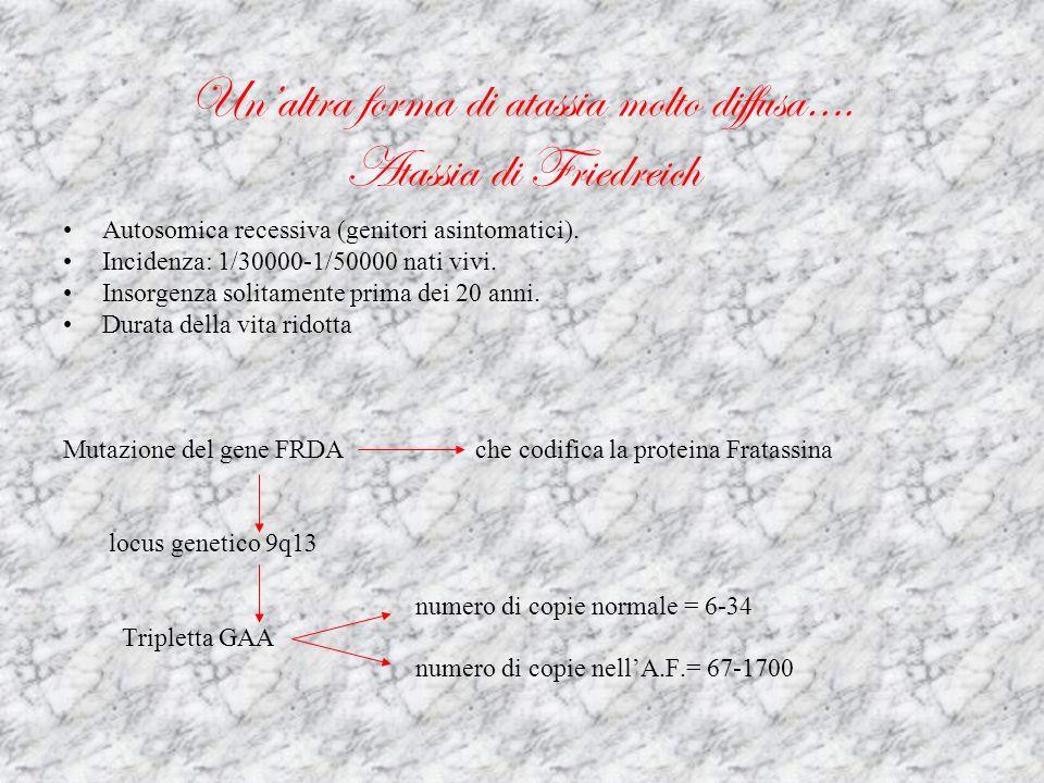 Sintomatologia… Anomalie della pupilla Atassia/incordinazione Atrofia ottica Agenesia/ ipoplasia/ anomalie del cervelletto Nistagmo Disturbi del comportamento Disturbi del linguaggio Insensibilità al dolore/ disturbi sensitivi Ipertonia/ rigidità/ spasticità Miatrofia/ agenesia muscolare Iperglicemia/ diabete mellito Oftalmoplegia