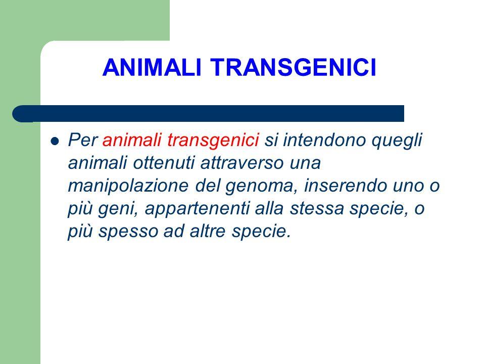 Per animali transgenici si intendono quegli animali ottenuti attraverso una manipolazione del genoma, inserendo uno o più geni, appartenenti alla stes