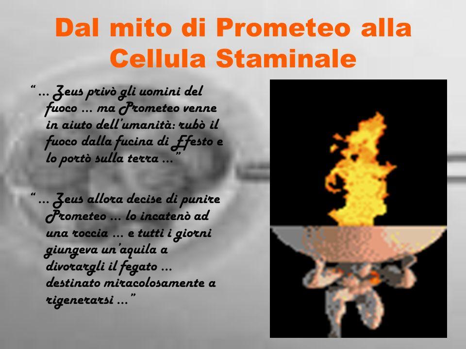 Dal mito di Prometeo alla Cellula Staminale … Zeus privò gli uomini del fuoco … ma Prometeo venne in aiuto dell umanità: rubò il fuoco dalla fucina di