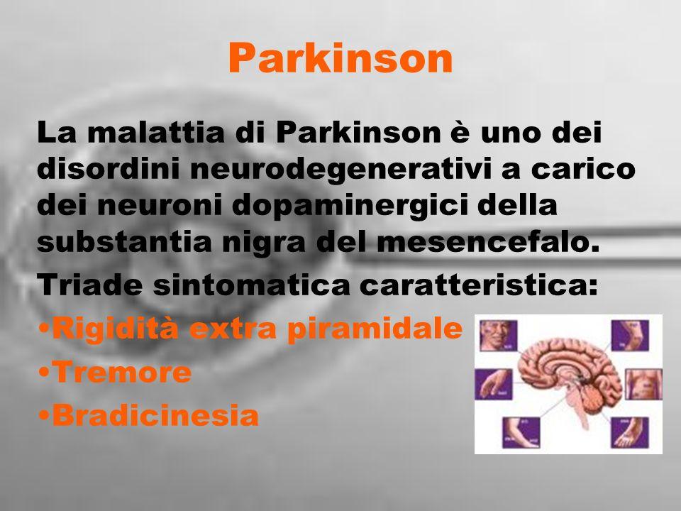 Parkinson La malattia di Parkinson è uno dei disordini neurodegenerativi a carico dei neuroni dopaminergici della substantia nigra del mesencefalo. Tr