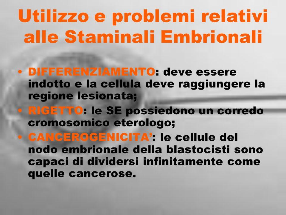 Utilizzo e problemi relativi alle Staminali Embrionali DIFFERENZIAMENTO: deve essere indotto e la cellula deve raggiungere la regione lesionata; RIGET