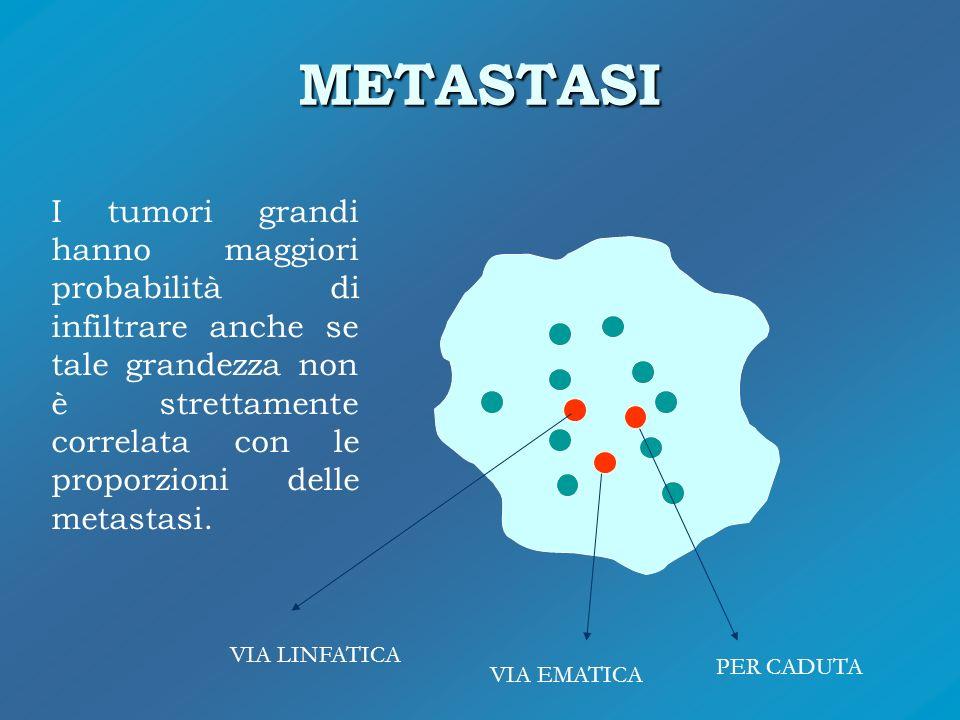 METASTASI VIA LINFATICA VIA EMATICA PER CADUTA I tumori grandi hanno maggiori probabilità di infiltrare anche se tale grandezza non è strettamente cor