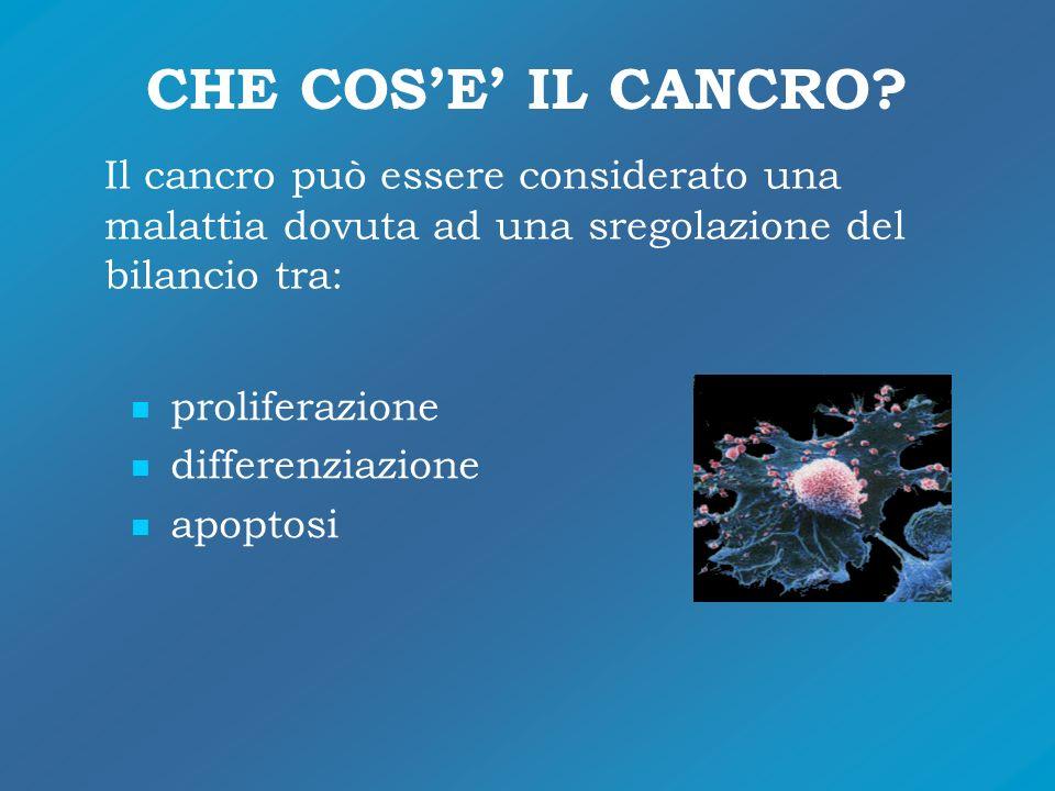 CHE COSE IL CANCRO? Il cancro può essere considerato una malattia dovuta ad una sregolazione del bilancio tra: proliferazione differenziazione apoptos