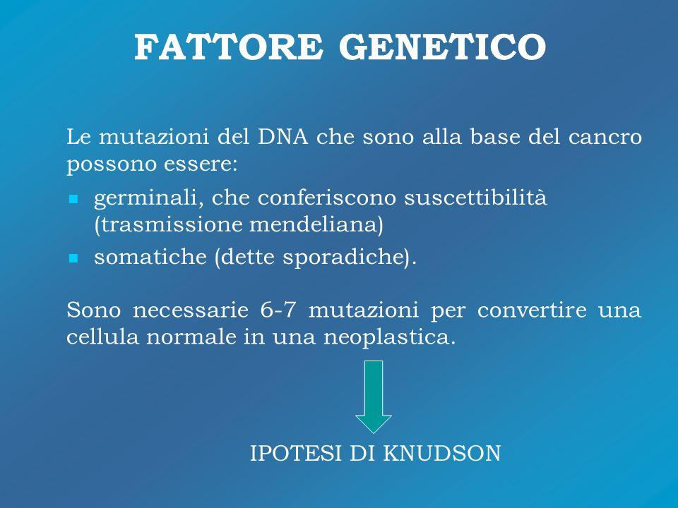 FATTORE GENETICO Le mutazioni del DNA che sono alla base del cancro possono essere: germinali, che conferiscono suscettibilità (trasmissione mendelian