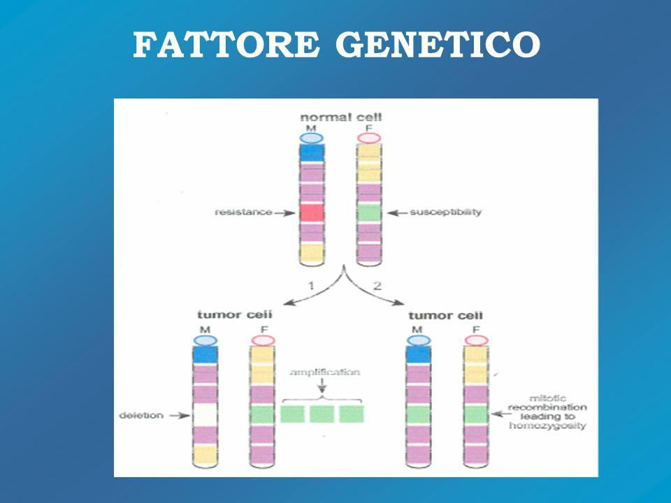 FATTORE GENETICO